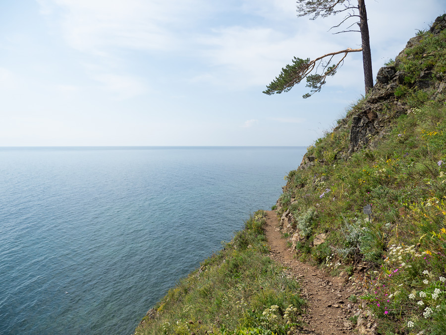 Great Baikal Trail in Summer
