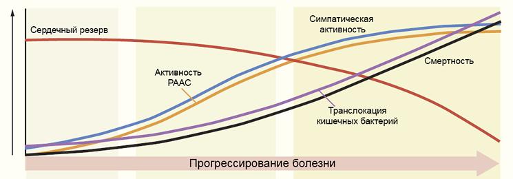 Прогрессирование цирроза печени