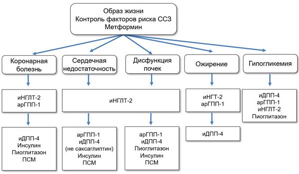 Ингибиторы натрий-глюкозного котранспортера-2 и сердечно-сосудистые болезни