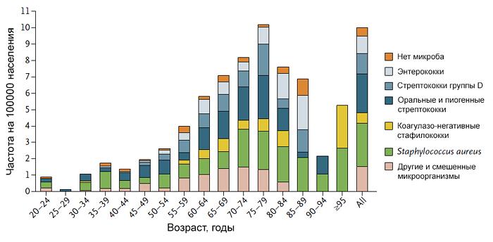 Частота инфекционного эндокардита в зависимости от возраста и микроба